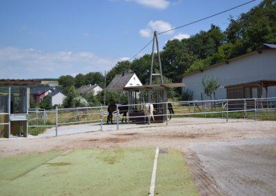 Heustation-im-Selektionsbereich 2 auf dem Eiflerhof
