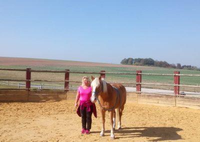 Pferd Mensch mit Heike Mohr